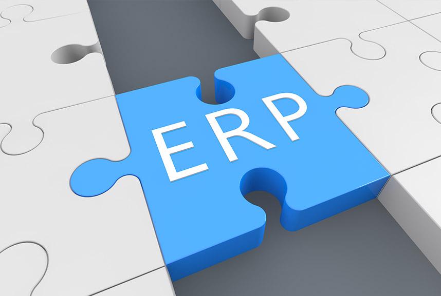 Puzzleteil ERP-Systeme